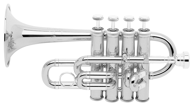 196S BACH Trumpet Outfit (196S)
